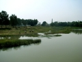River Kopai