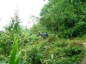 Trekking in Latpanchar