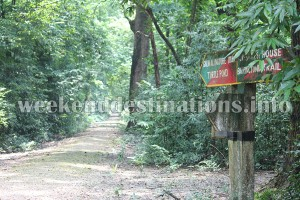 Bethuadahari Forest Trails