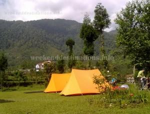 Yuksom camping