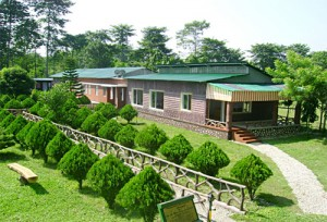 Accommodation in Murti