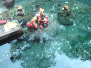 Hot Spring at Taptapani