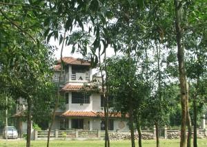 Sonajhuri Homestay