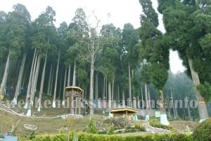 Lamahatta Park