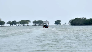 Boating at Kharibil, Odisha